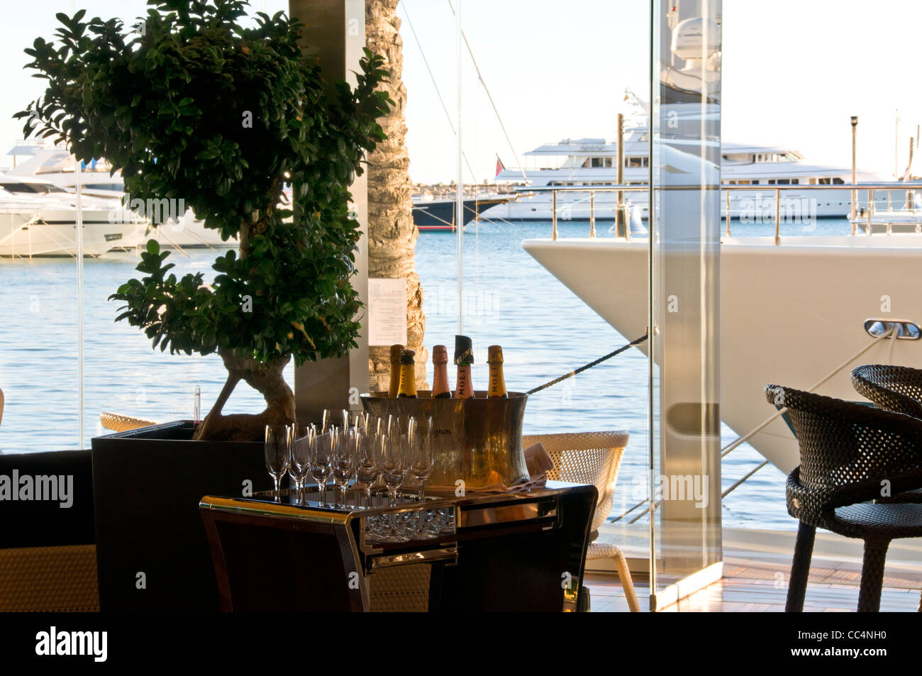 Variety of Champagnes and glasses with cooler in waterside restaurant bar luxury marina resort Puerto Portals Mallorca - Stock Image