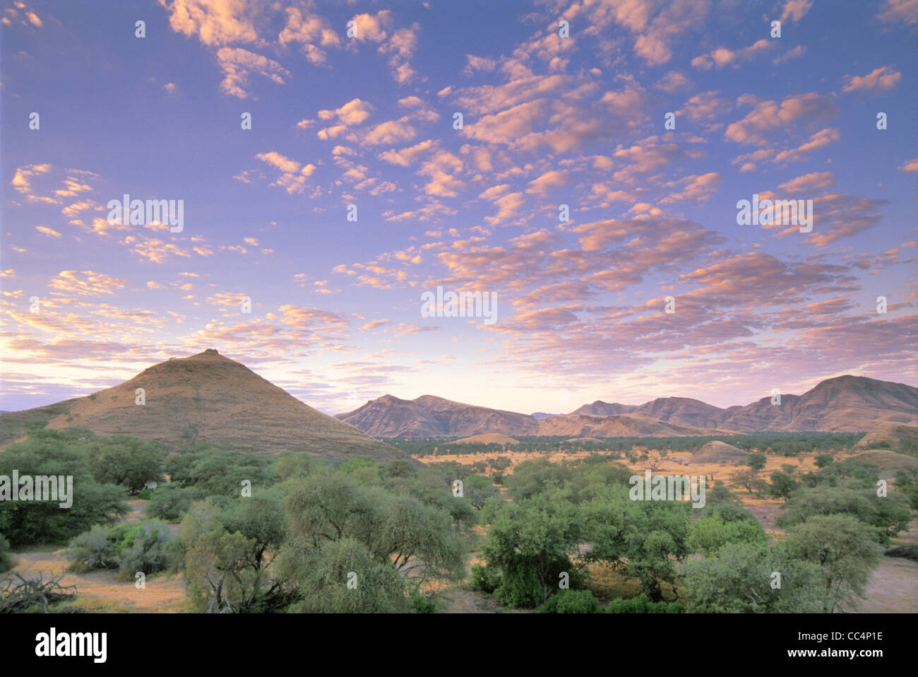 Early Evening in Damarland - Stock Image