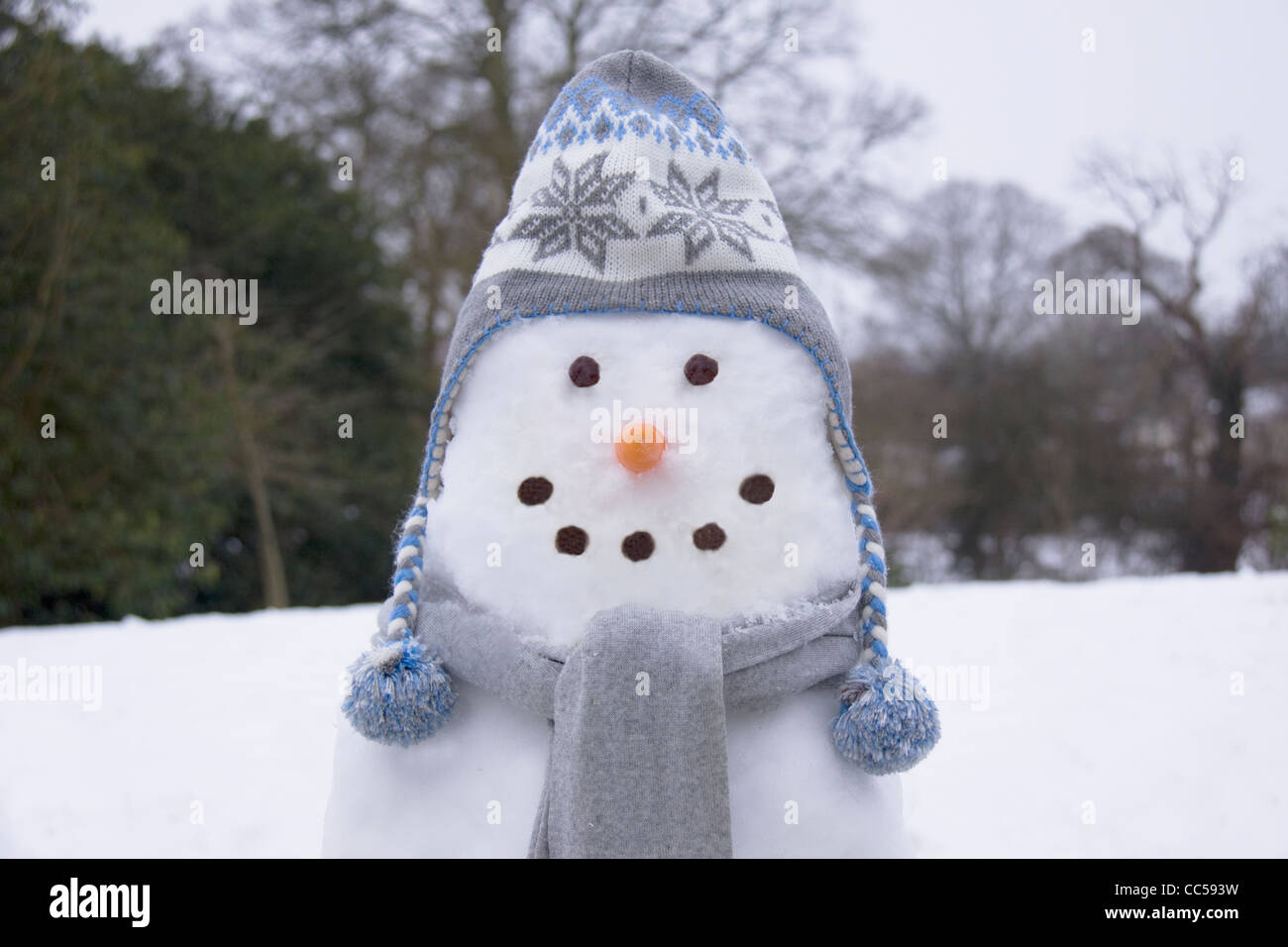 Snowman in a hat and scarf - Stock Image