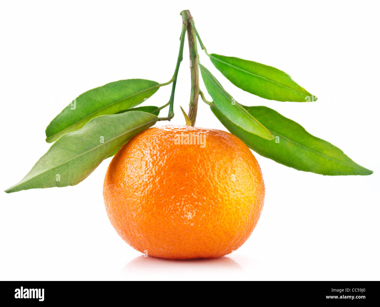Tangerine with leaves on white background. - Stock Image