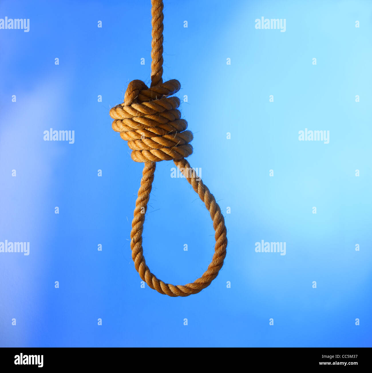 A rope tied into a noose - Stock Image
