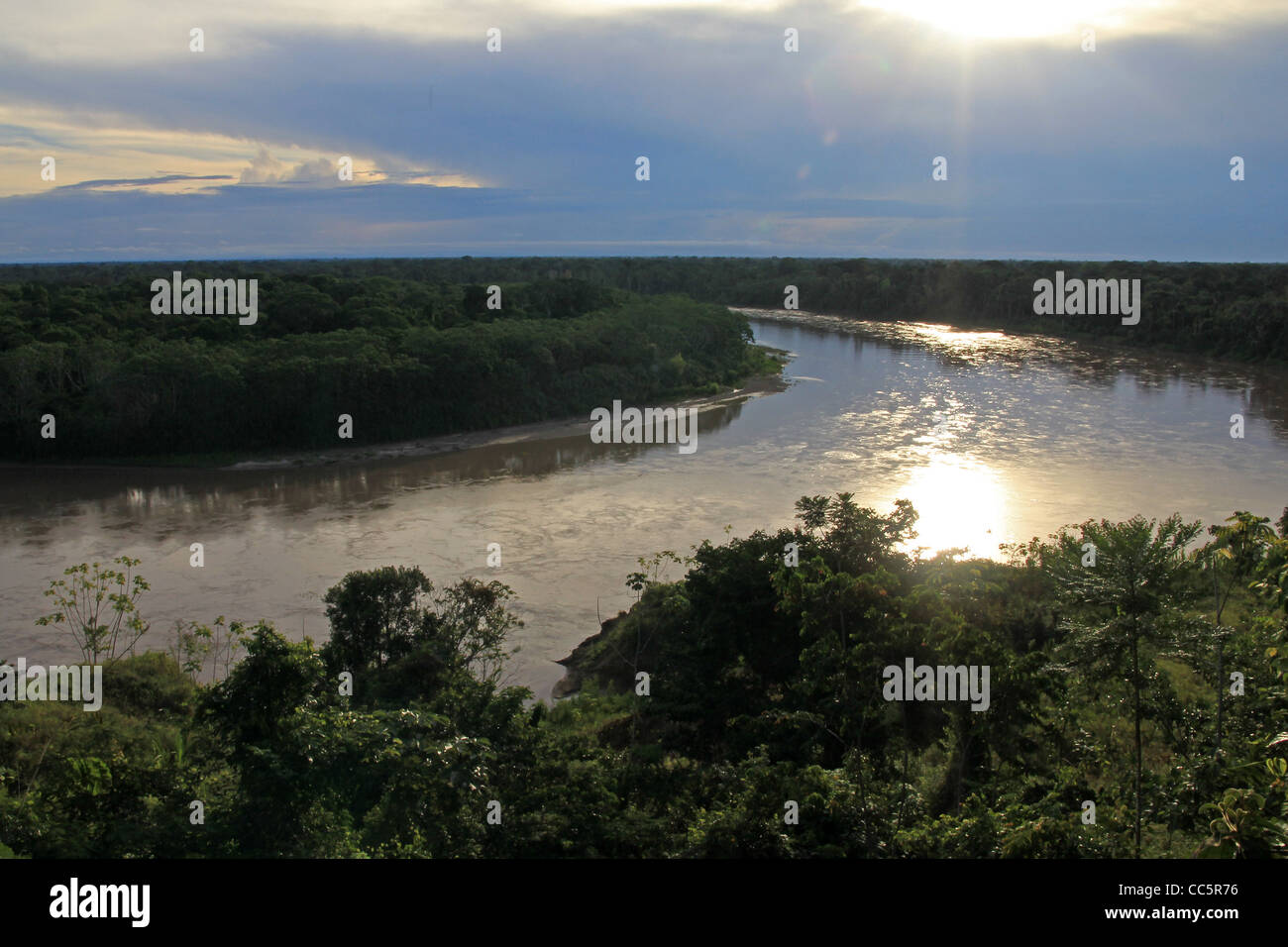 Primary Rain Forest viewed from the air in the Madre de Dios Region, Peru (The Amazon) - Stock Image