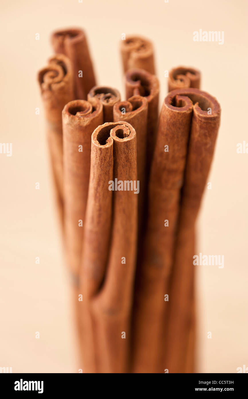 Bunch of Cinnamon sticks - Stock Image