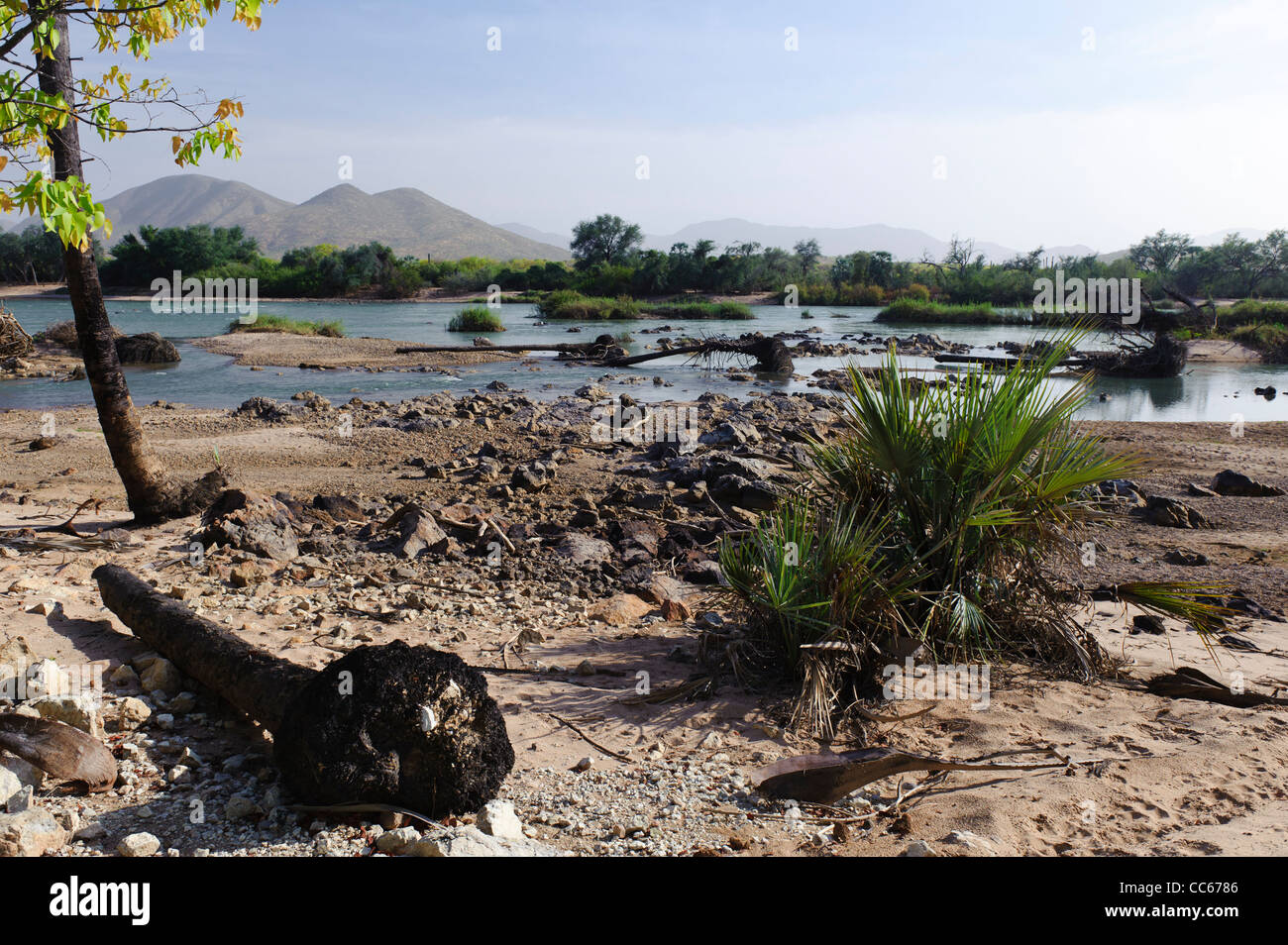 The Kunene river, the border between Namibia and Angola. Seen from the Namibian side. - Stock Image