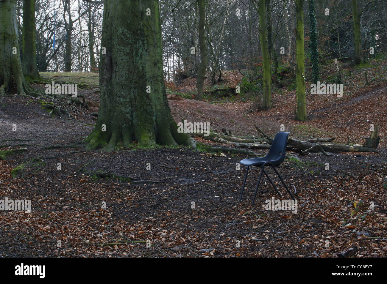 plastic chair in forest near Sparken Hill, Worksop, Notts, England, UK - Stock Image