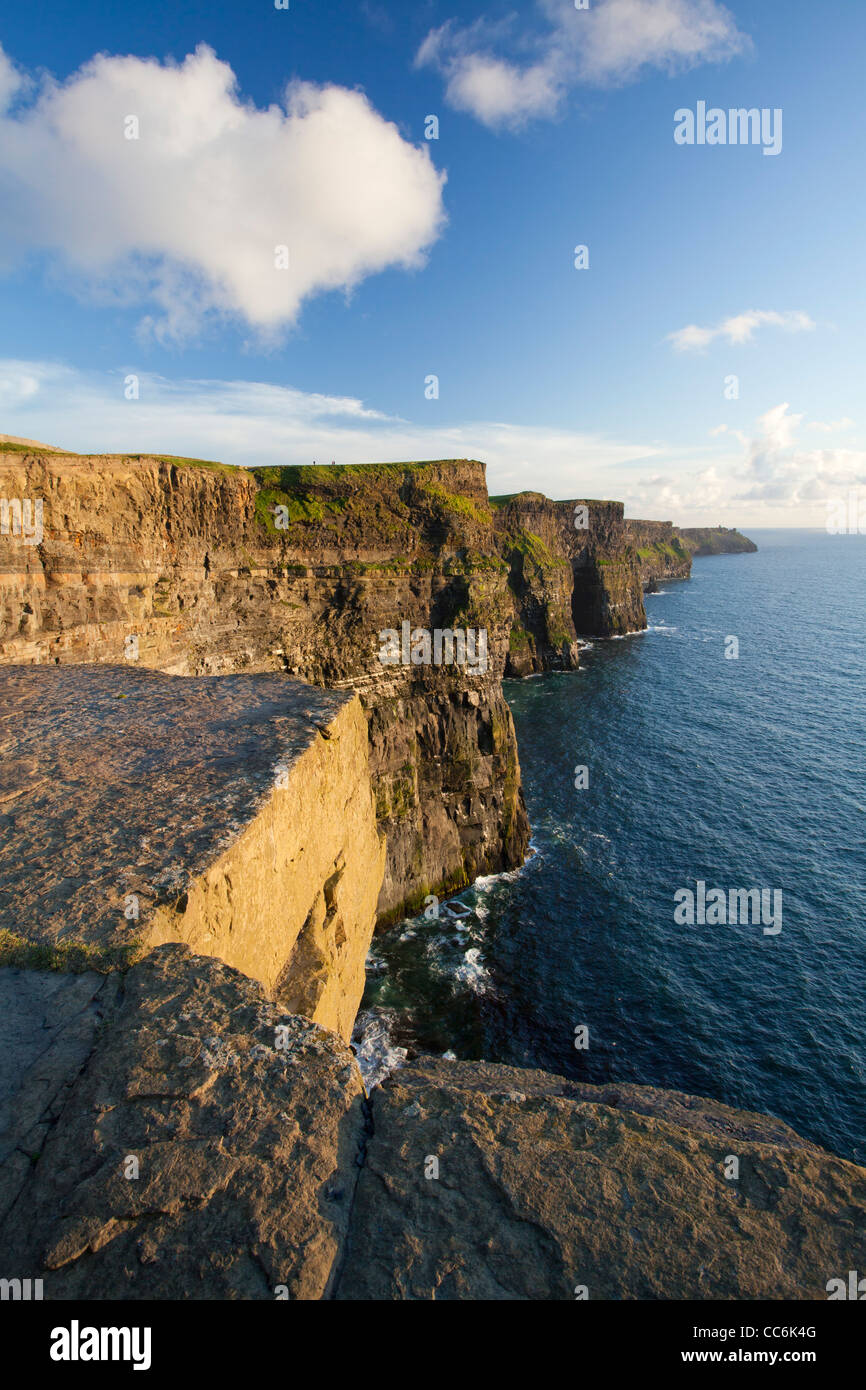 Evening light on the Cliffs of Moher, The Burren, County Clare, Ireland. - Stock Image