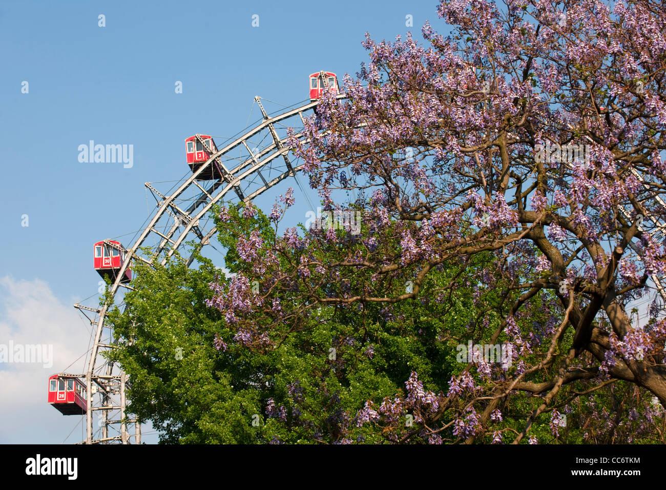 Österreich, Wien II, Prater, Vergnügungspark Wurstelprater, Riesenrad, Wahrzeichen Wiens - Stock Image