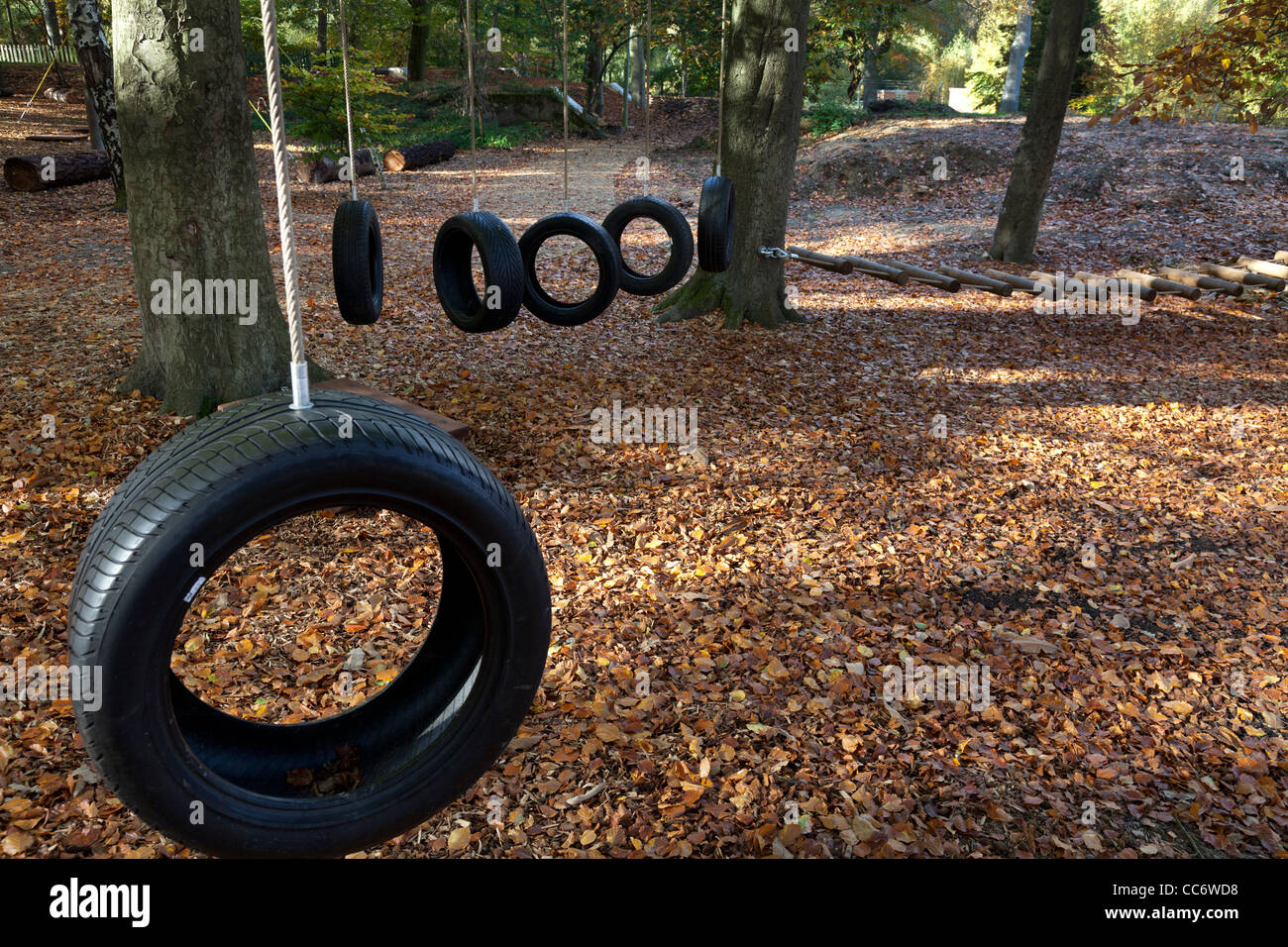 tyre swings at Runways End Outdoor Centre - Stock Image
