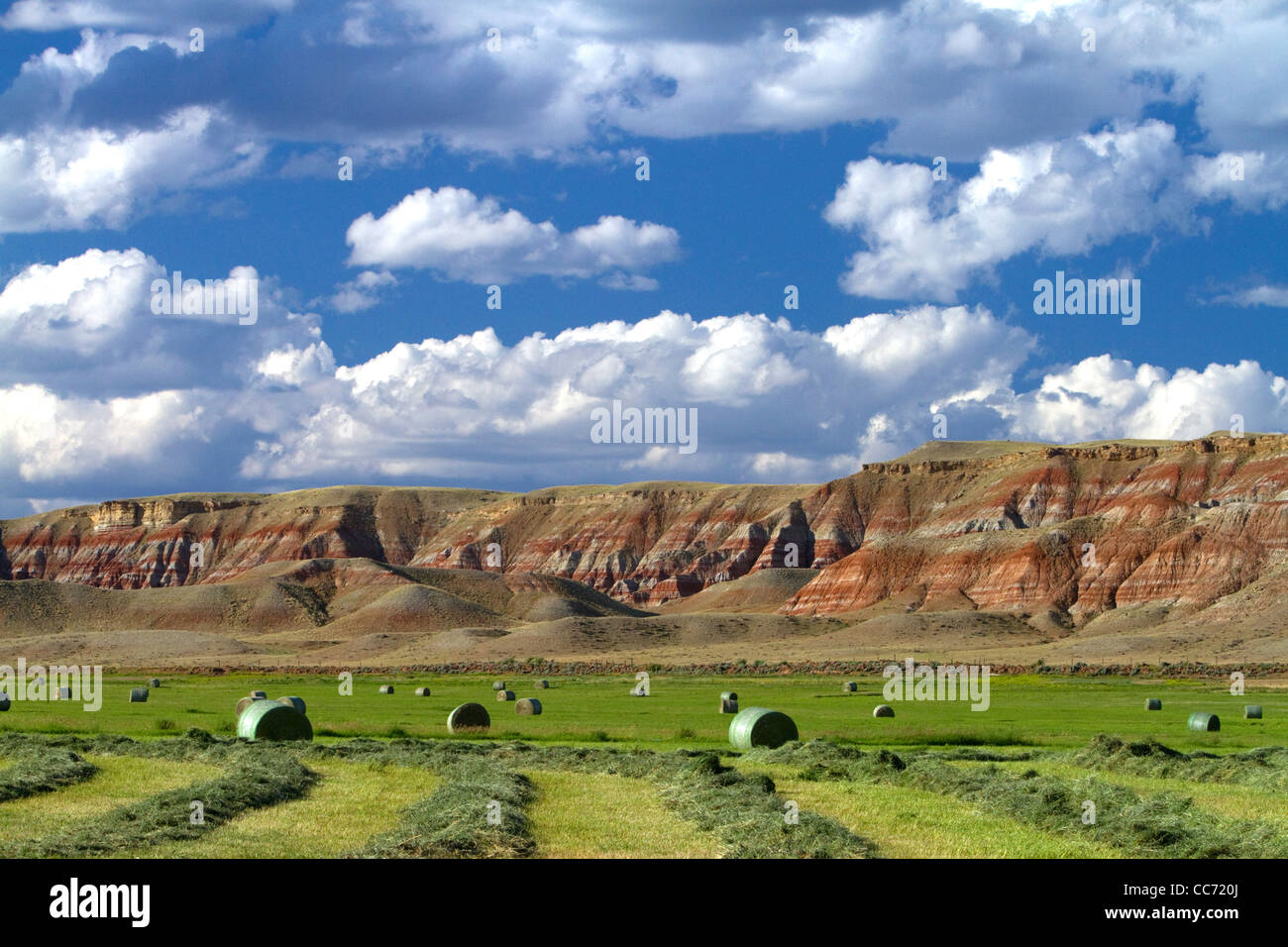 Red rock cliffs and newly harvested alfalfa hay near Dubois, Wyoming, USA. - Stock Image