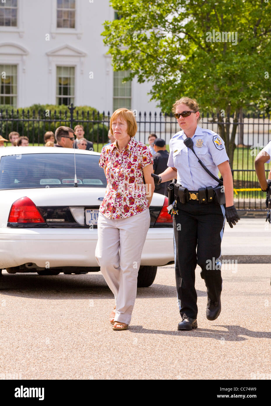 A female demonstrator is handcuffed and taken away by police - Washington, DC USA - Stock Image