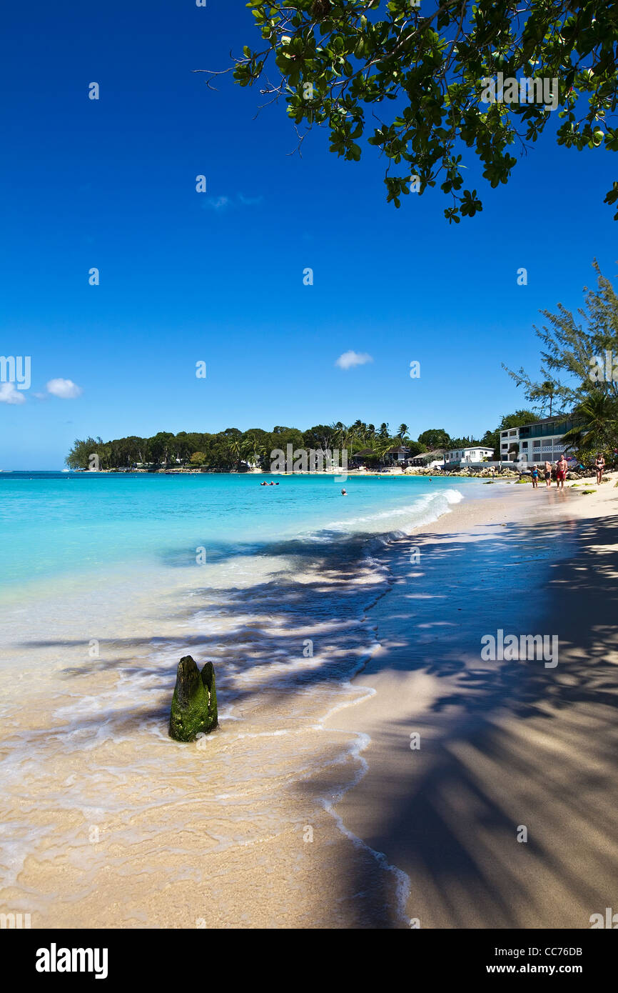 St James, West coast, Barbados, Caribbean, West Indies - Stock Image