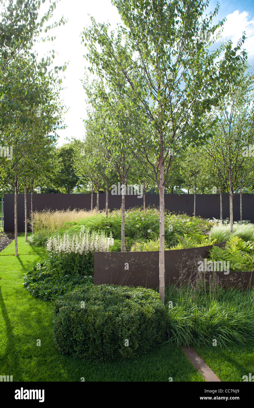 Contemporary Garden Design. Silver Birch Stock Photo
