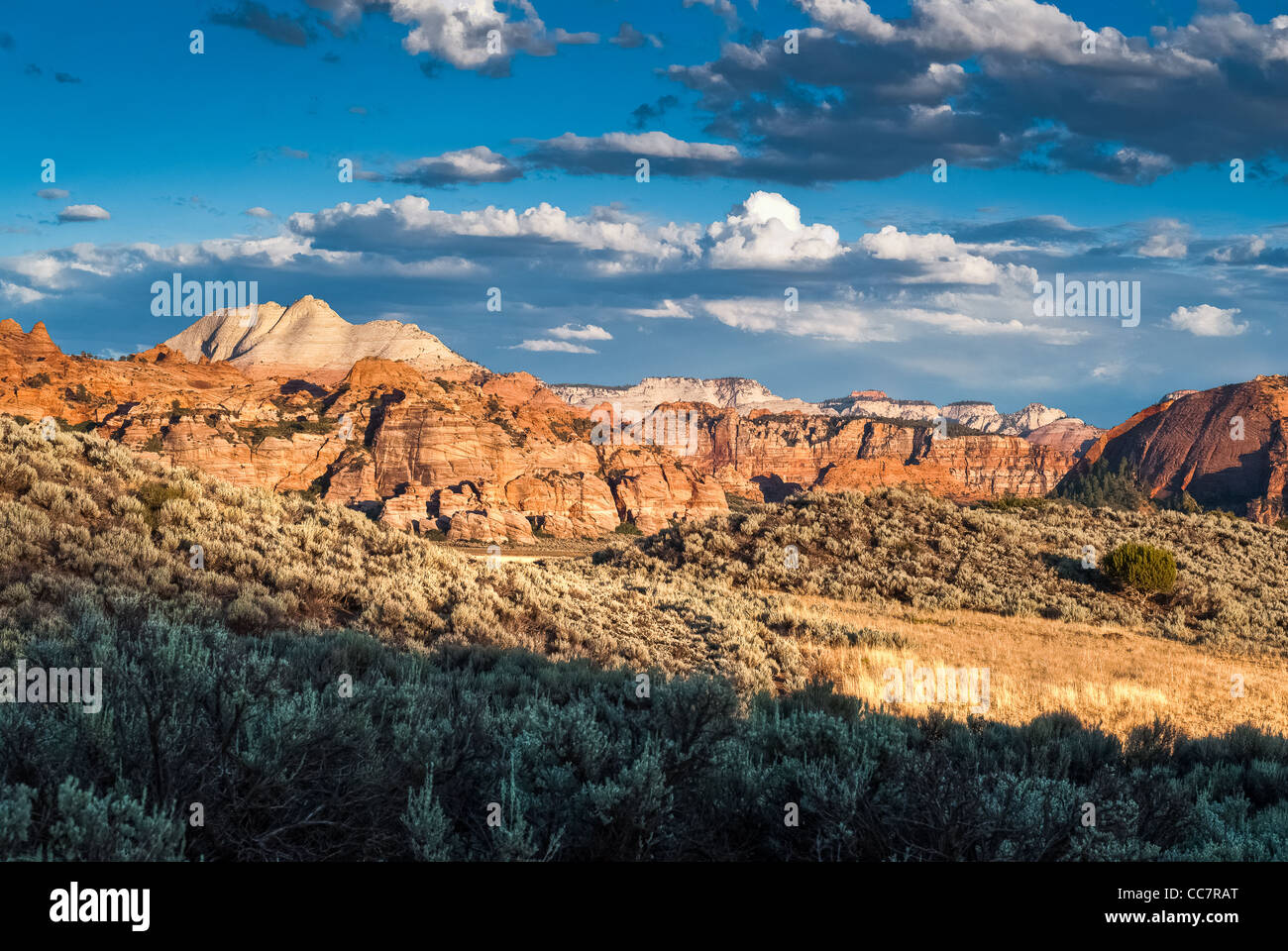 sunset panorama of sandstone cliffs at kolob plateau in zion national park, utah, usa - Stock Image
