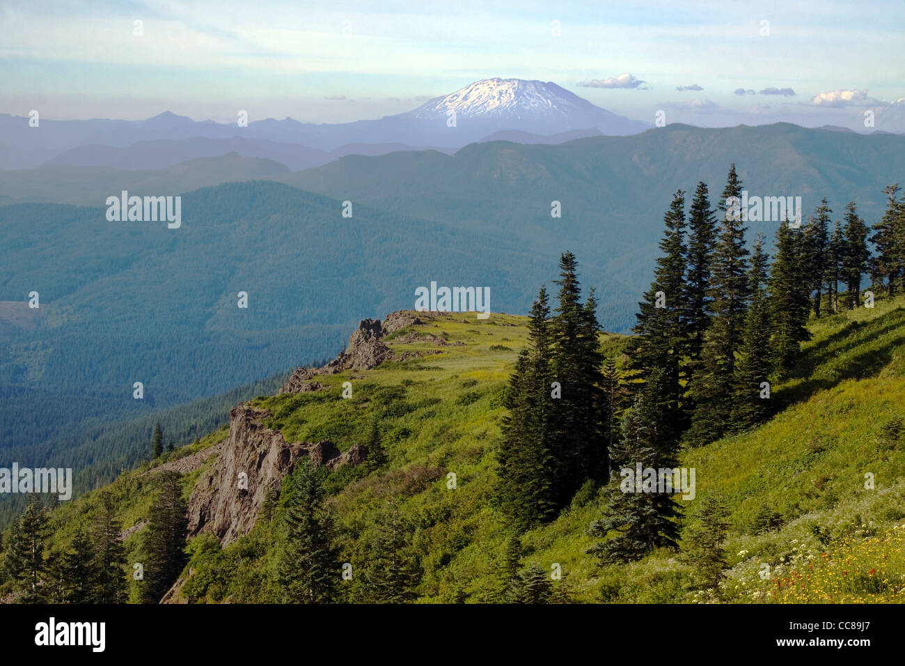 View of Washinton's Mt St Helens Volcano - Stock Image