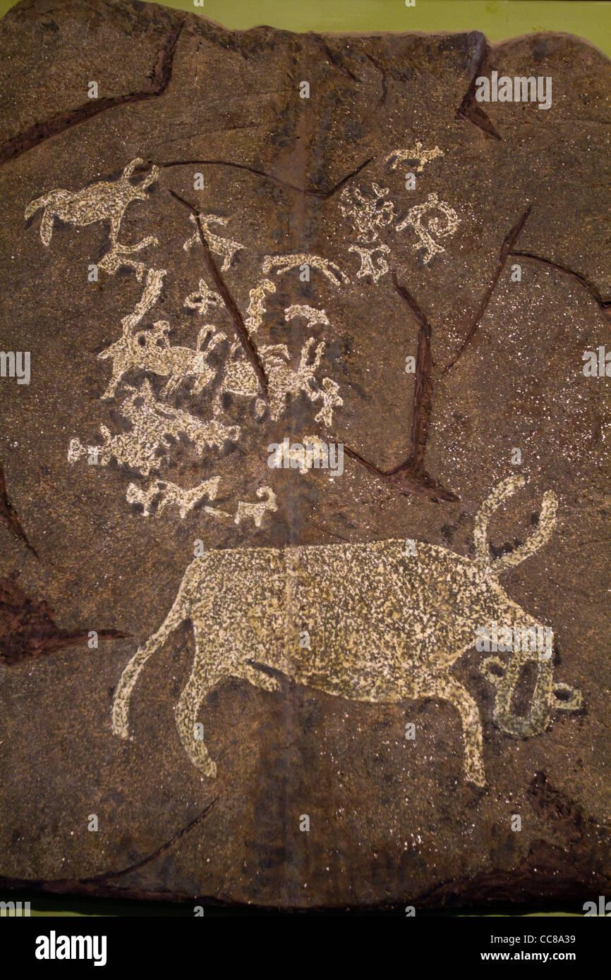 Prehistoric rock paintings in National Museum of Mongolian History Ulaanbaatar Mongolia - Stock Image