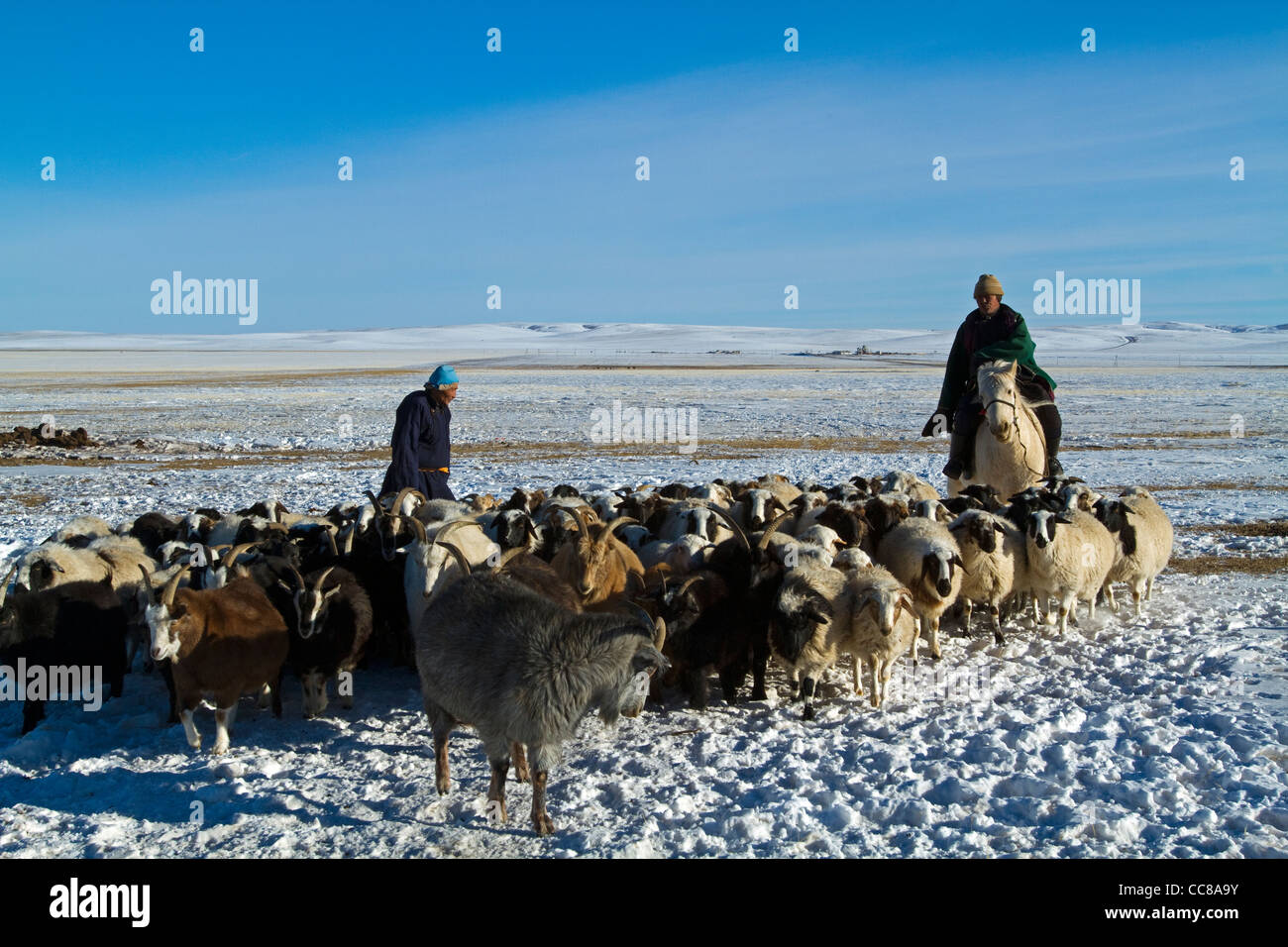 Herders in Karakoram Mongolia - Stock Image