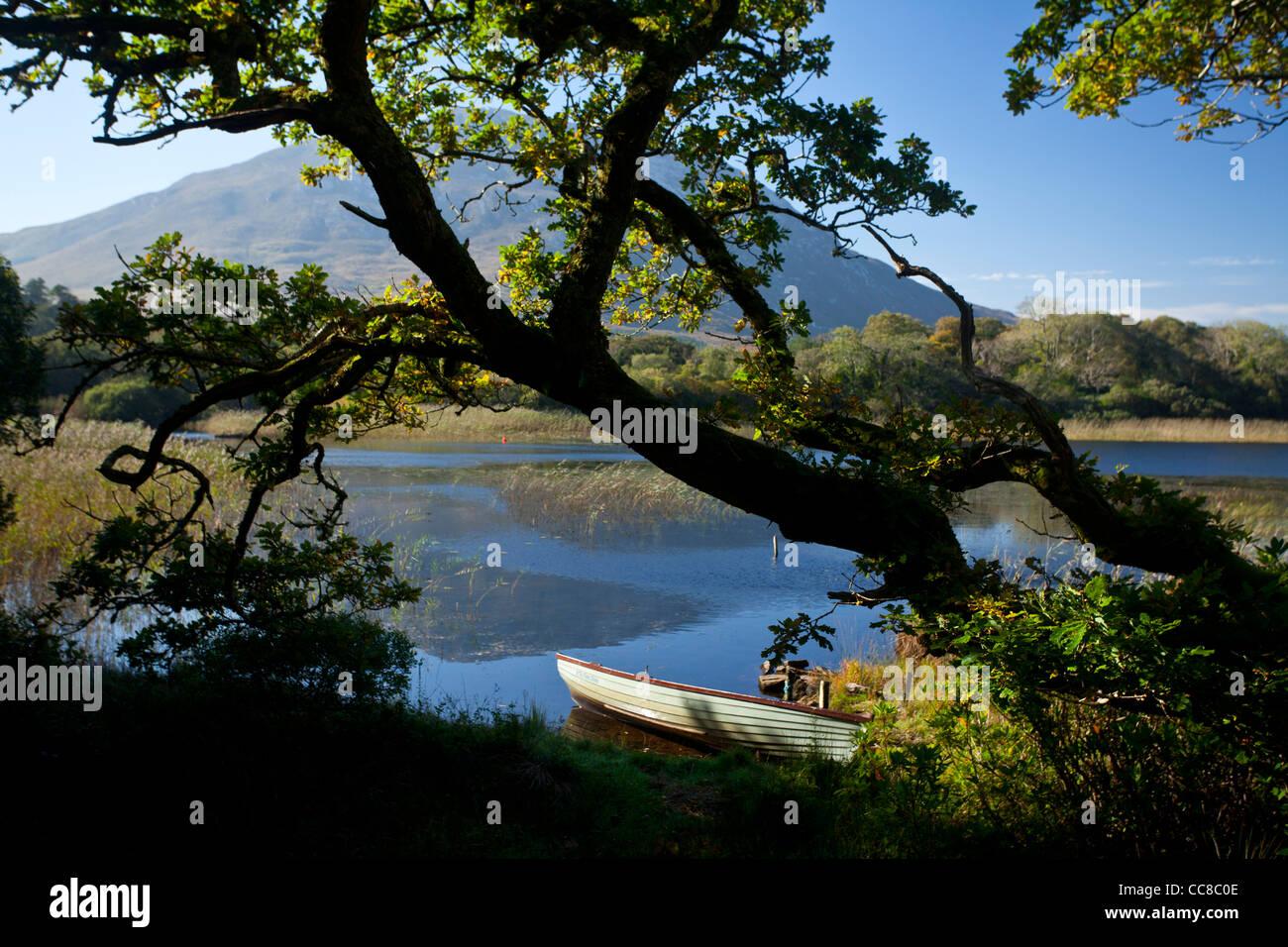 Fishing boat on the shore of Lough Maladrolaun, beside Kylemore House, Connemara, County Galway, Ireland. - Stock Image