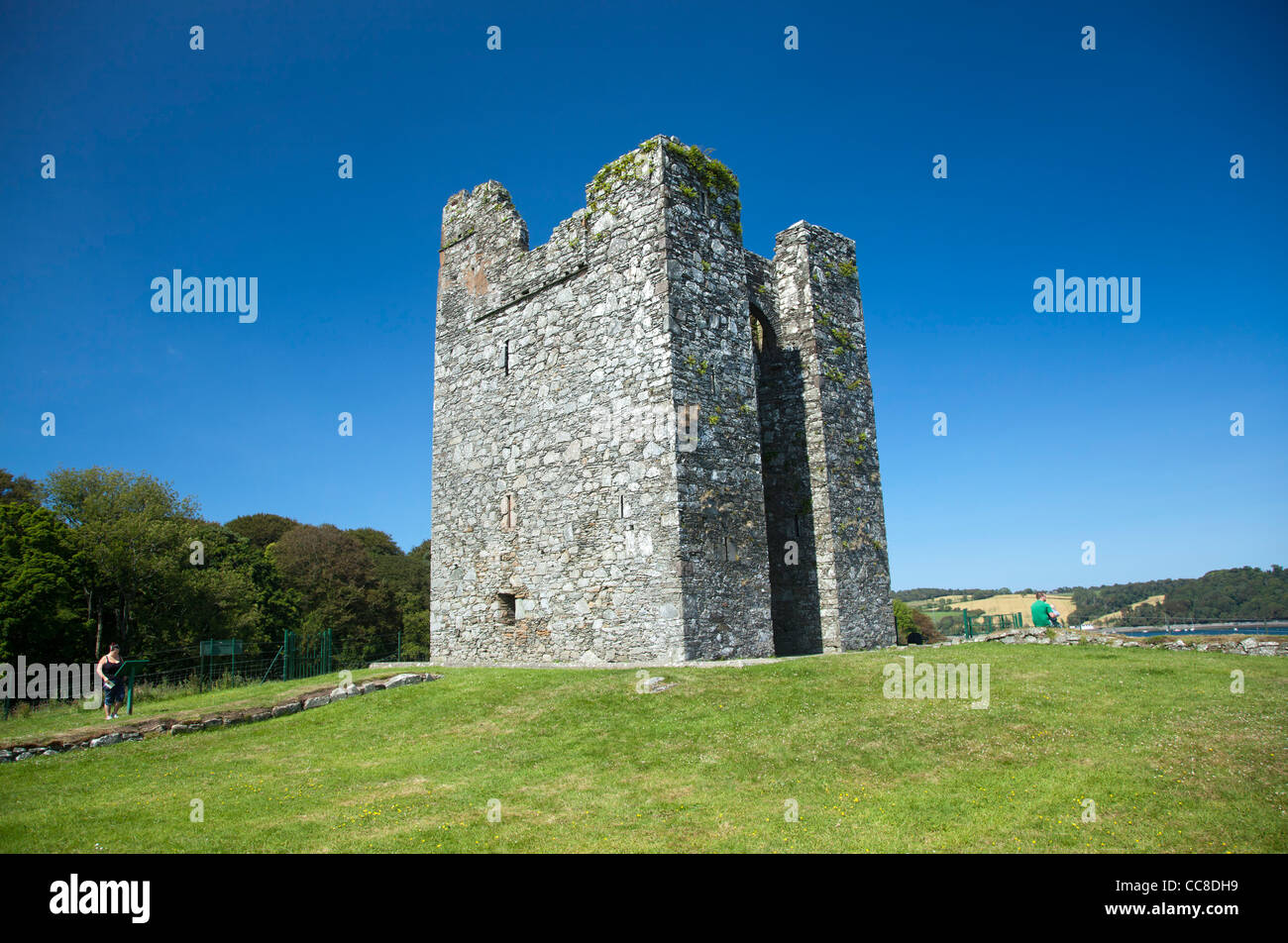 The 15th century tower house of Audley's Castle, Castle Ward Estate, County Down, Northern Ireland. - Stock Image