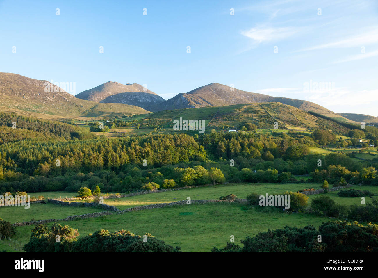 Farmland and forest beneath the Mourne Mountains, County Down, Northern Ireland. - Stock Image
