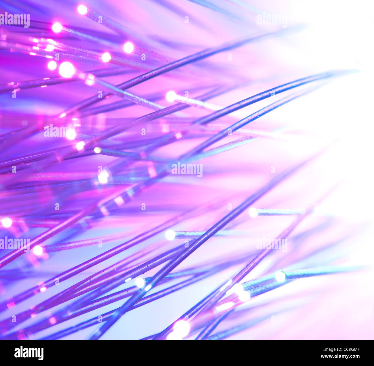 Optical fibers bright colors - Stock Image