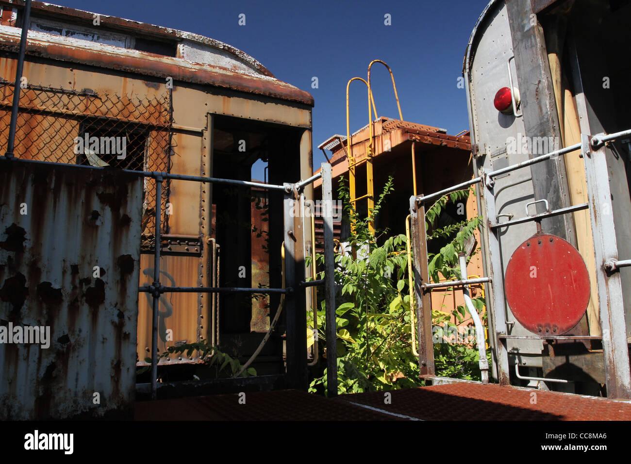 Neglected train cars. The Railway Museum of Greater Cincinnati, Covington, Kentucky, USA. - Stock Image