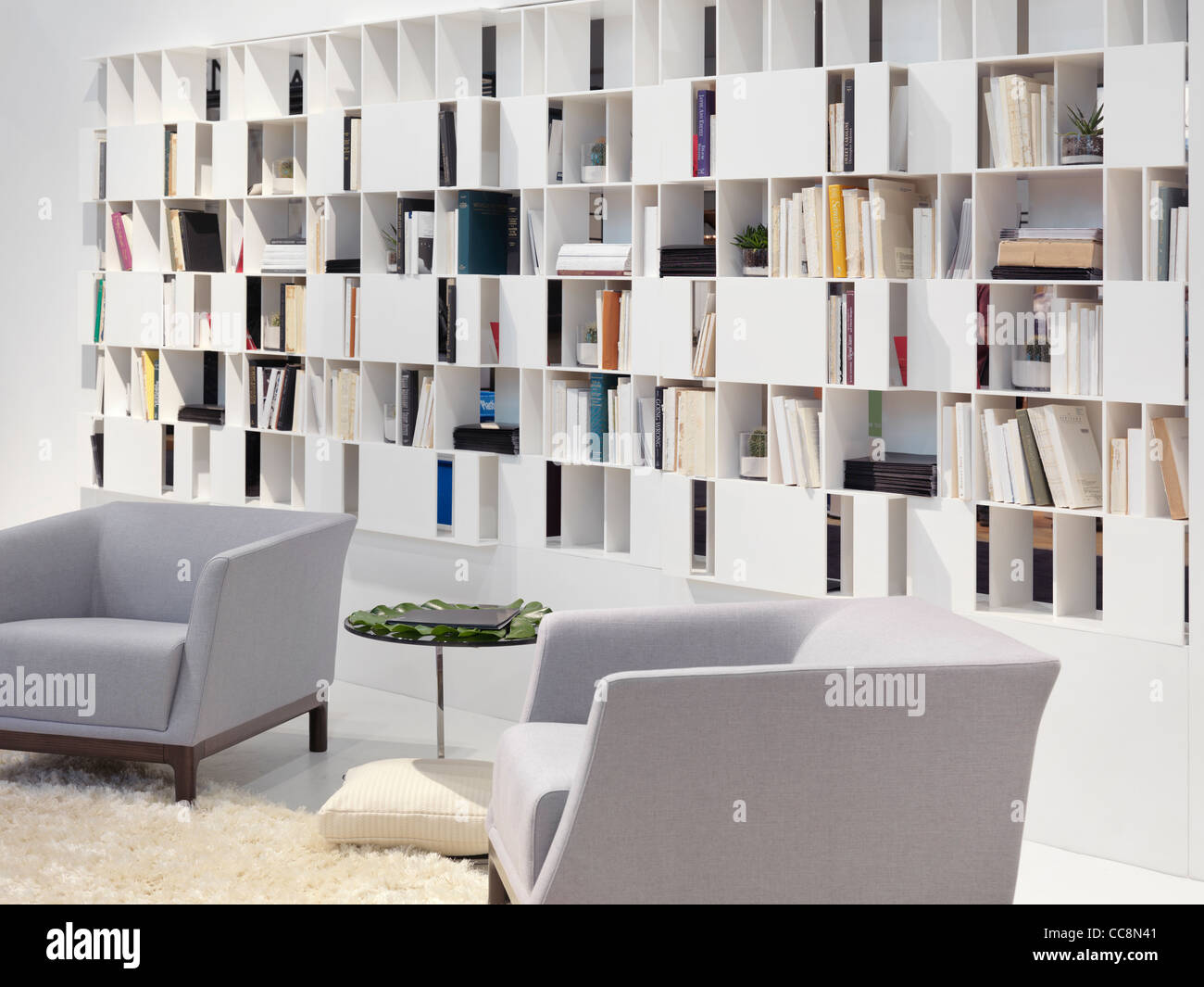Wall bookcase home library contemporary interior design Stock Photo
