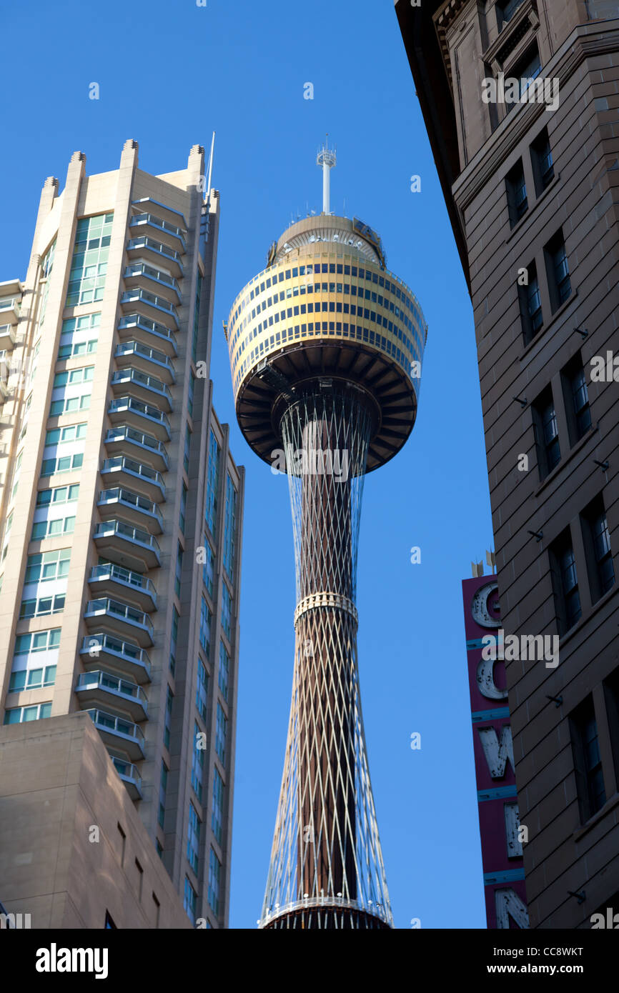 Sydney Tower Eye and CBD buildings - Stock Image