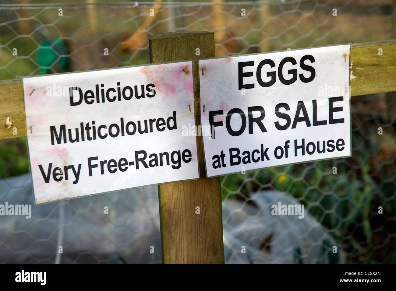 Free range eggs for sale sign - Stock Image