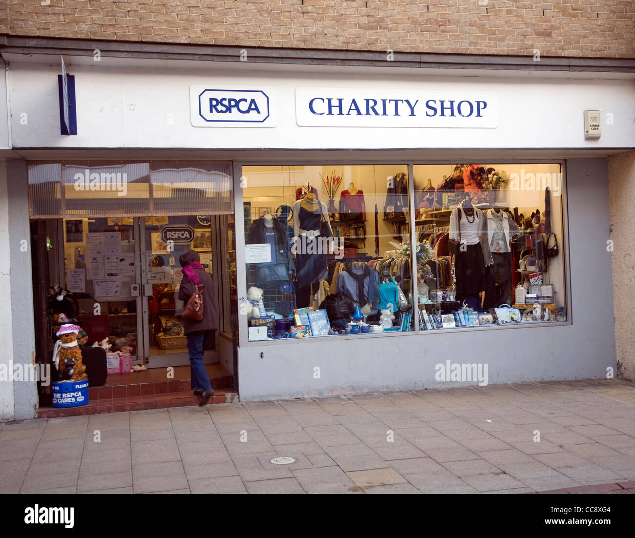 RSPCA charity shop - Stock Image