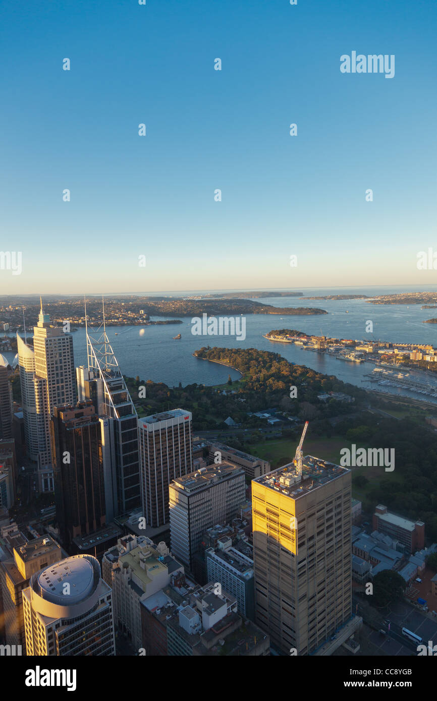 Sydney bay and CBD downtown from Sydney Tower Eye - Stock Image