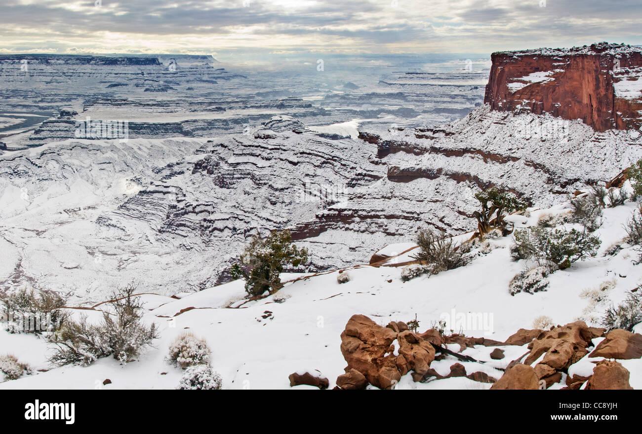 Canyonland National Park utah - Stock Image
