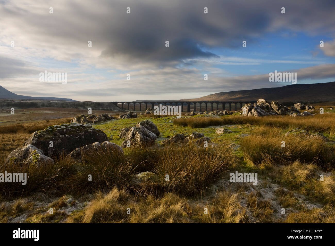 Limestone Pavement at the Ribblehead Viaduct across the River Ribble at Ribblehead, in North Yorkshire, UK - Stock Image