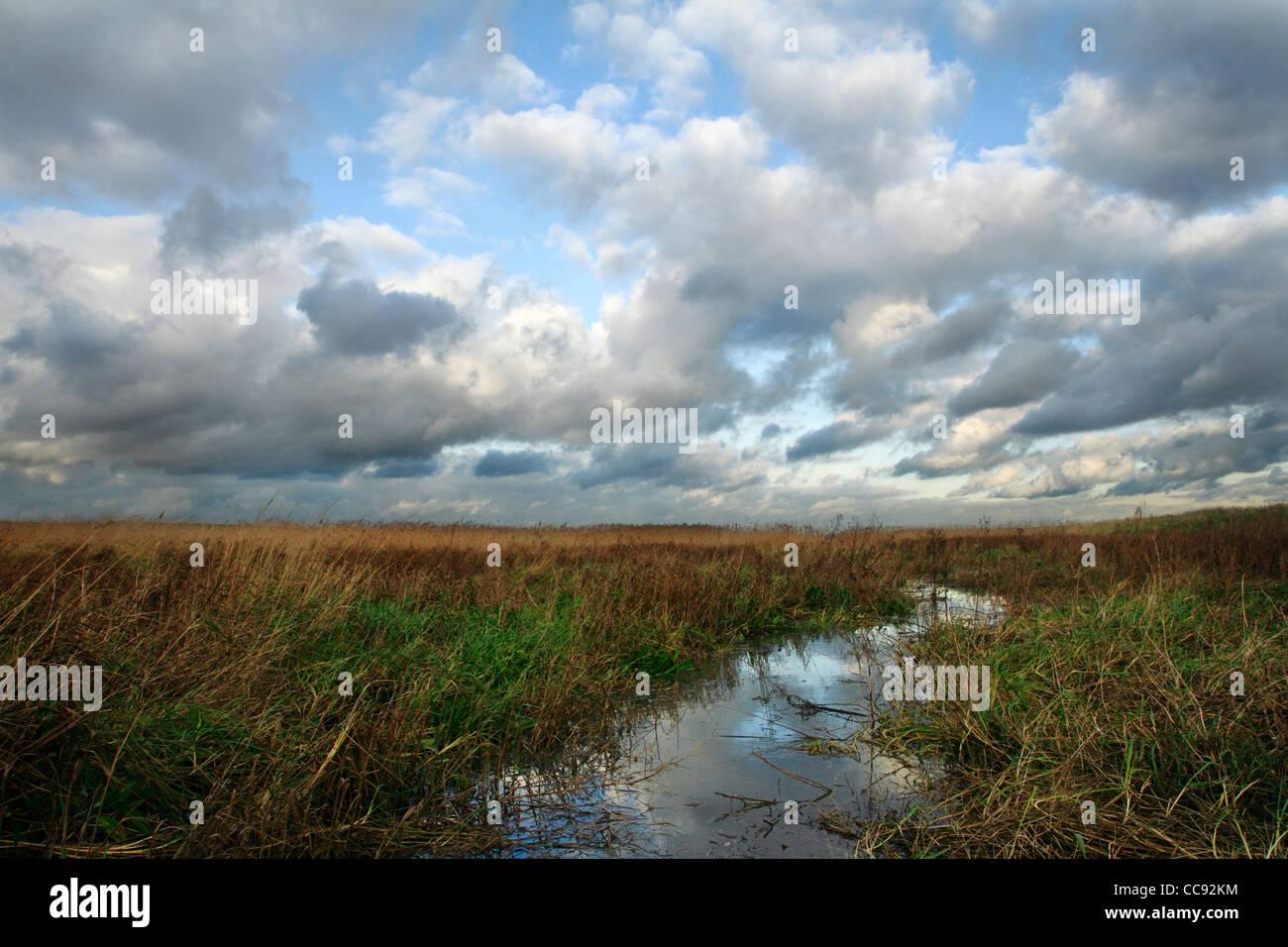 Erith Marshes, Kent UK Stock Photo