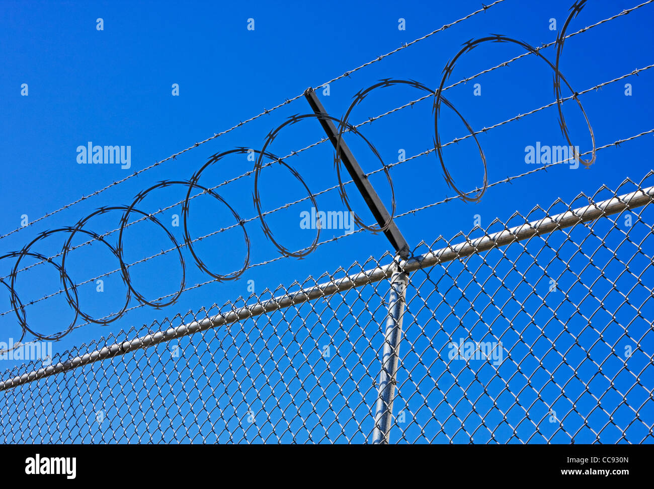 barbed wire and chain link fence - Stock Image