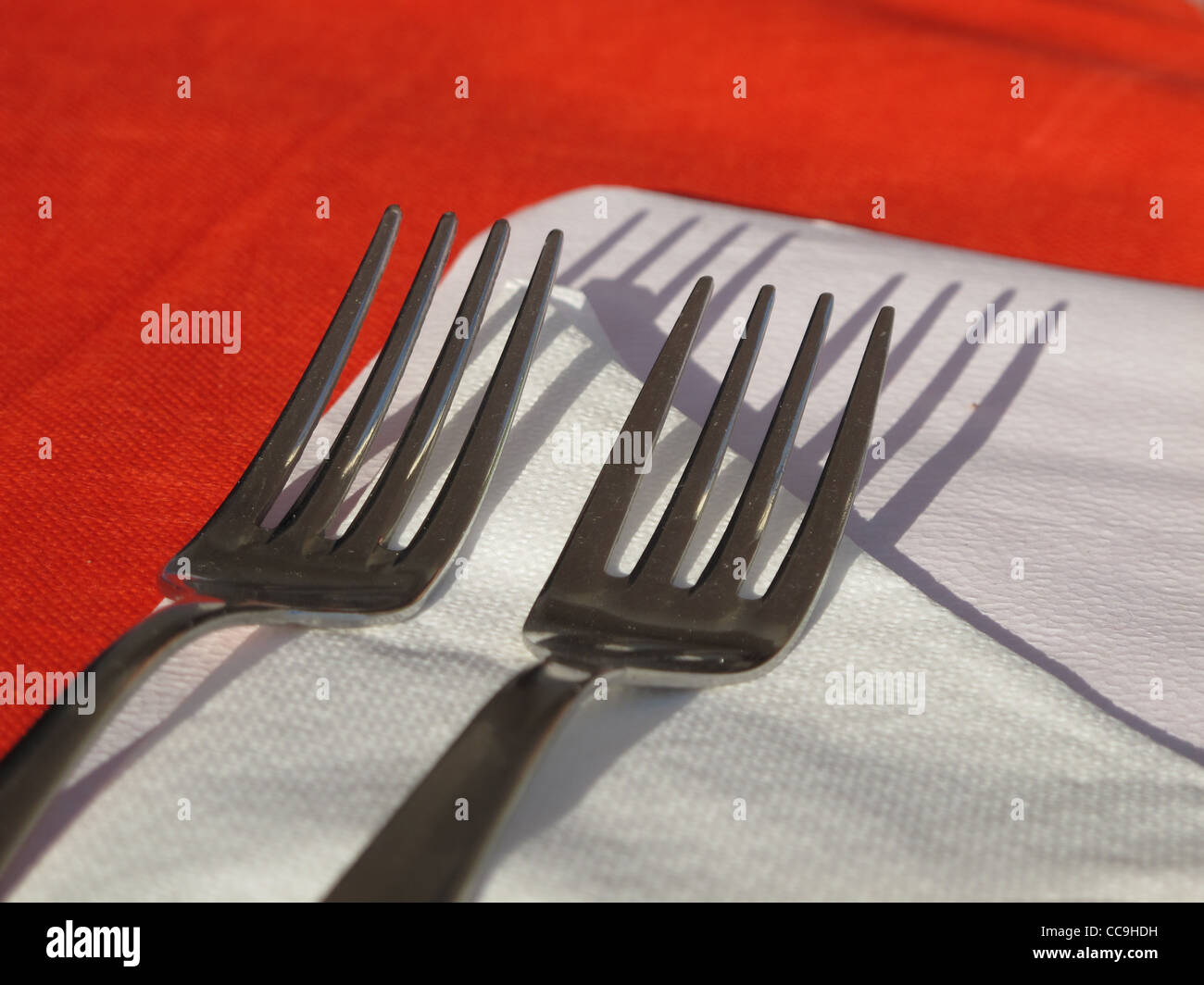 table setting with two forks and paper napkin : table setting forks - Pezcame.Com