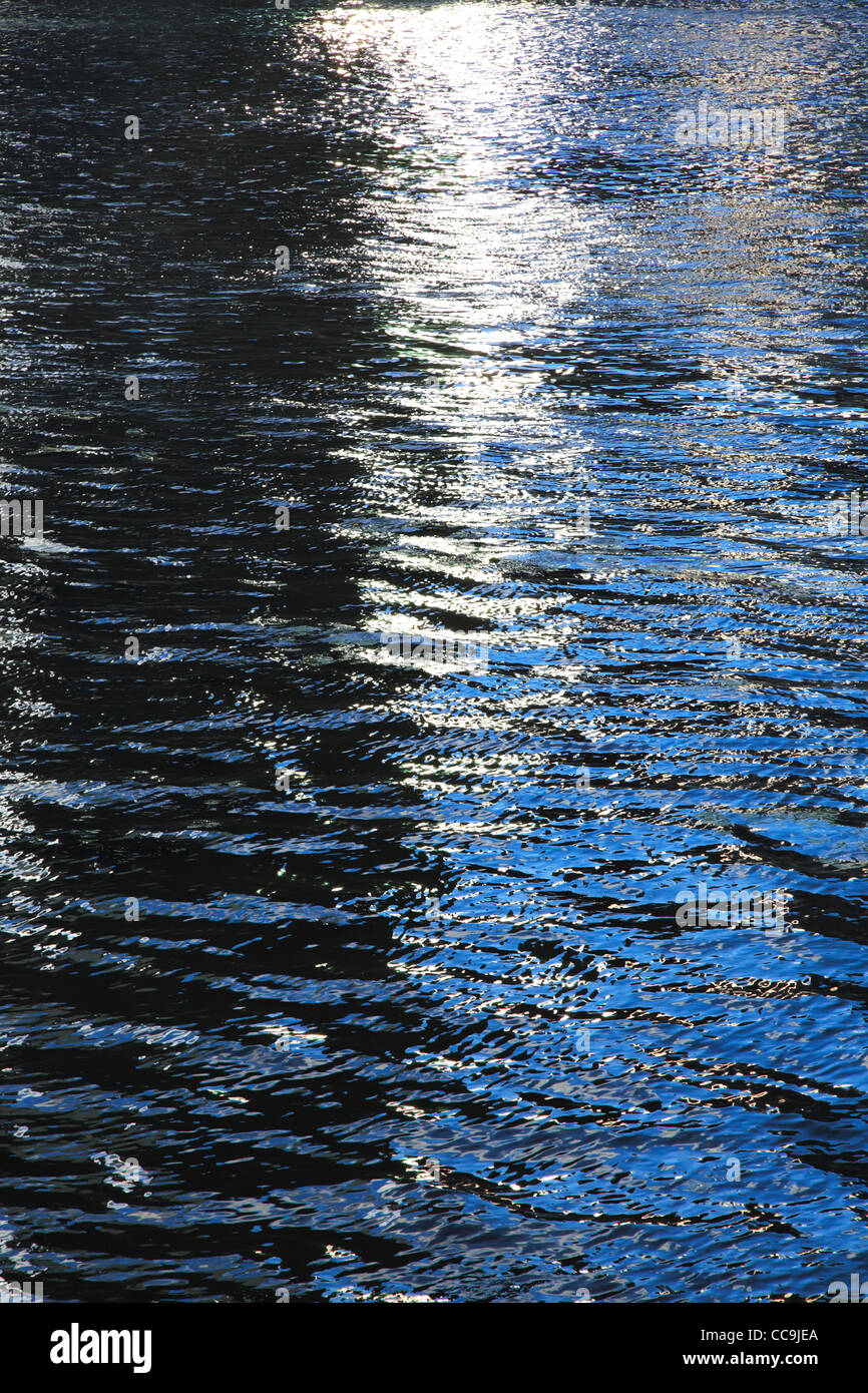 Evening water surface. Vertical composition. - Stock Image