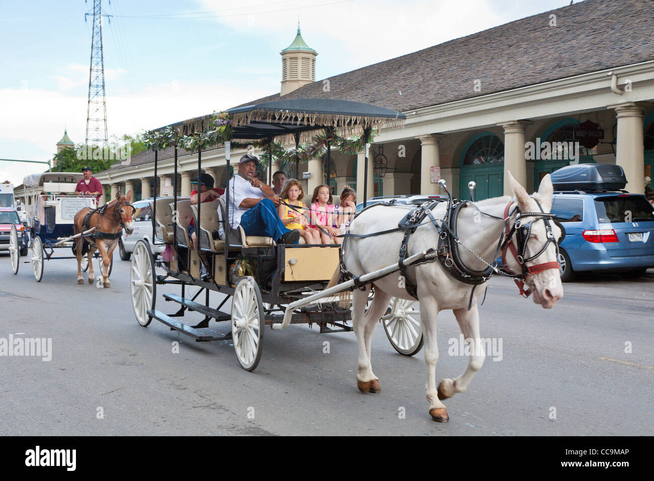 Horse and carriage vendor talking to his passengers on Decatur Street in the French Quarter of New Orleans, LA - Stock Image