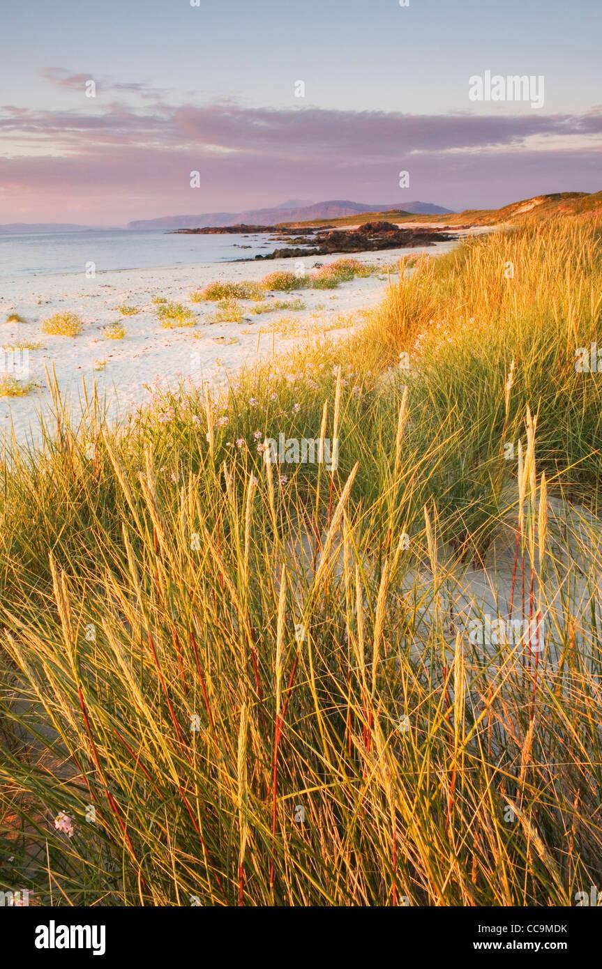 Dunes and beach at sunset, Isle of Iona, Scotland. - Stock Image