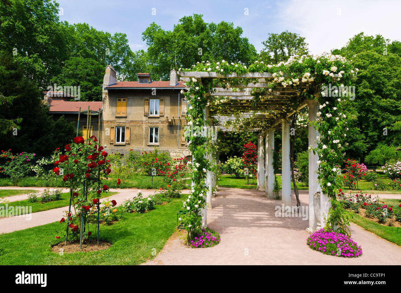 Rose Garden And Trellis At Parc De La Tete D Or Lyon France Unesco Stock Photo Alamy