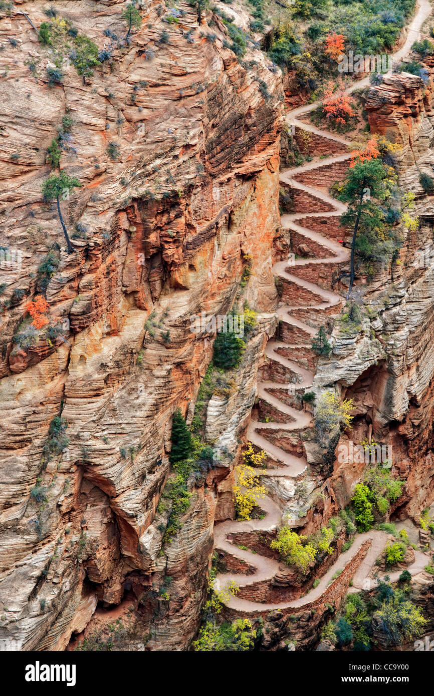 switchbacks named walter s wiggles take hikers to scout lookout and