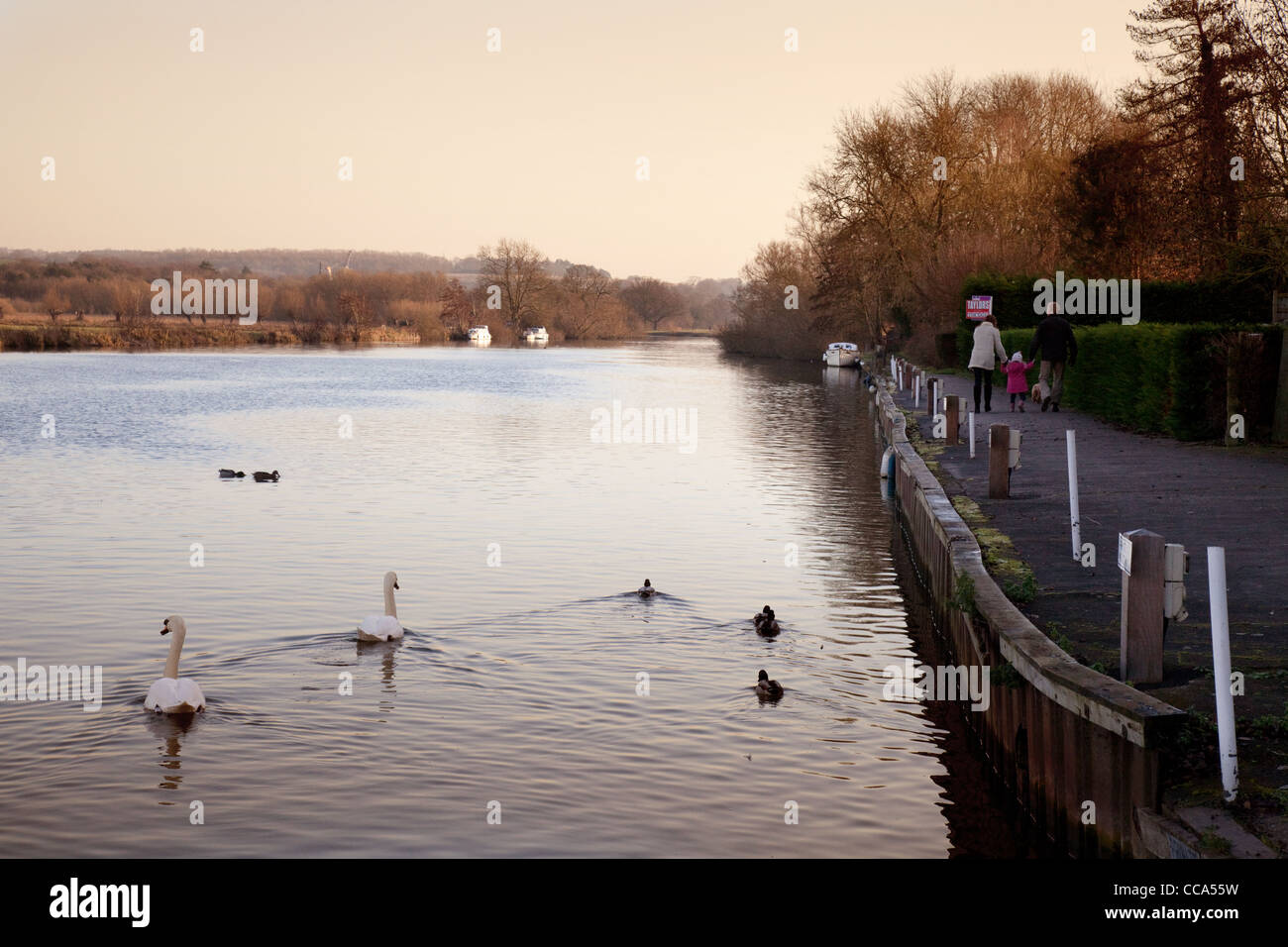 The towpath on the River Thames path at Moulsford, Oxfordshire UK - Stock Image