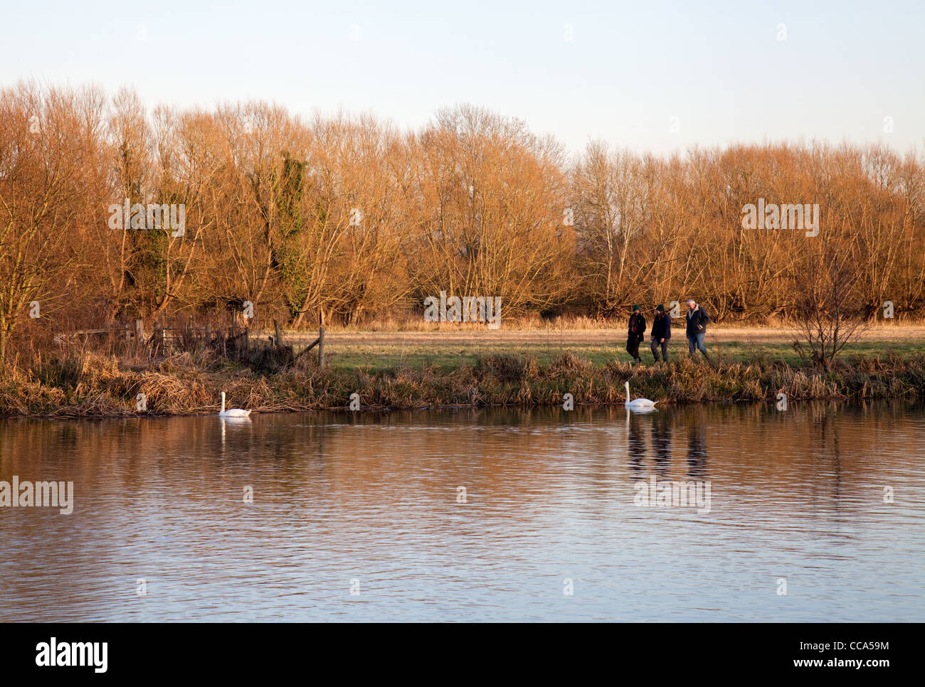Walkers on the Thames path towpath at Moulsford, Oxfordshire UK - Stock Image