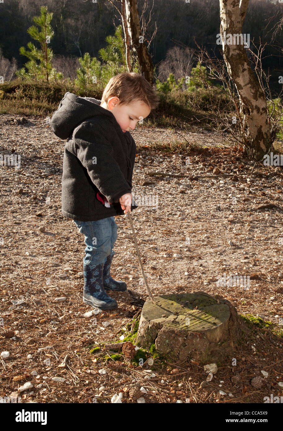 young boy playing with a stick learn by discovery and experience outside in the woods having fun - Stock Image