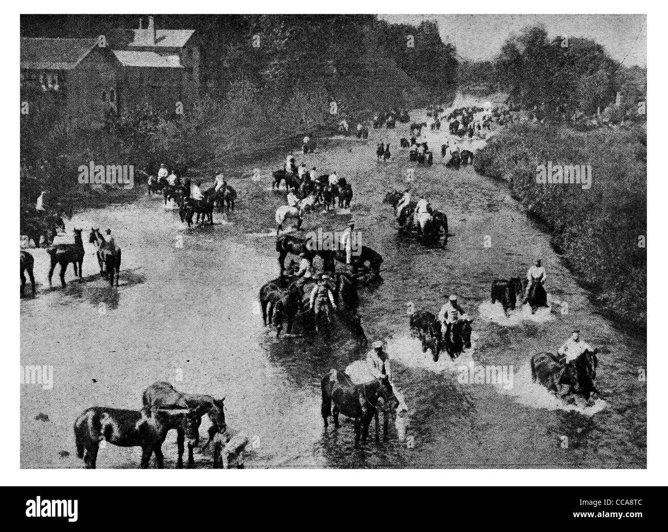 1915 German invaders France watering horses horse stream cavalry feeding rest river bank - Stock Image