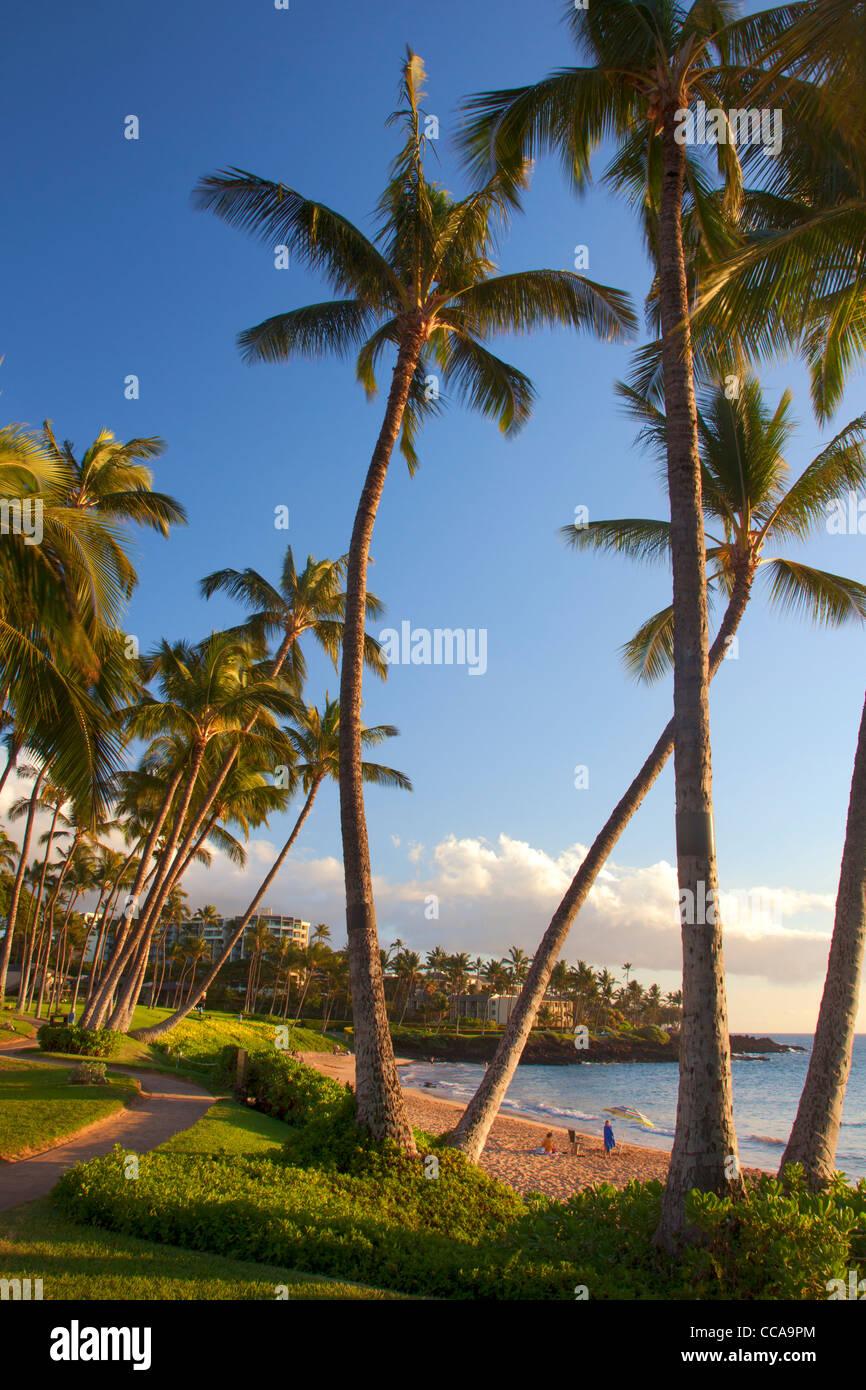 Ulua Beach, Wailea, Maui, Hawaii. Stock Photo