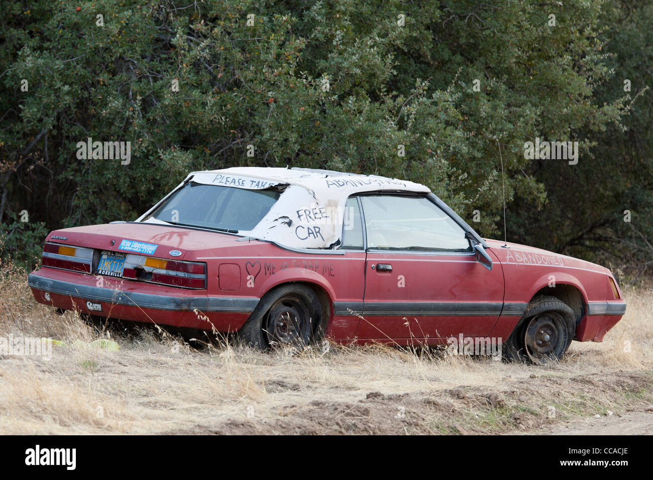 Abandoned car - USA - Stock Image