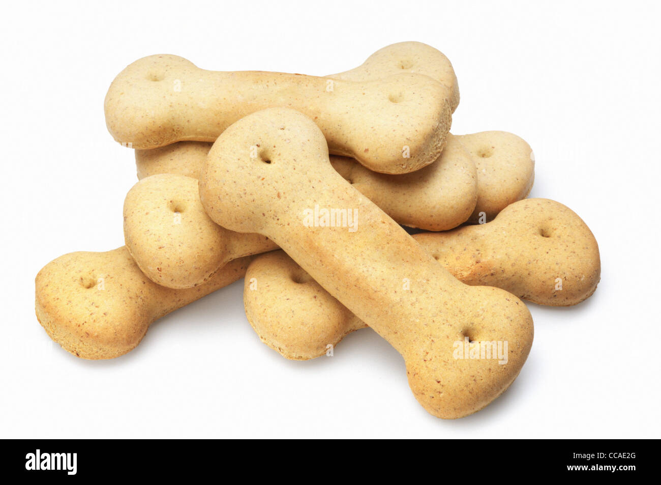 Dog Biscuit - John Gollop - Stock Image