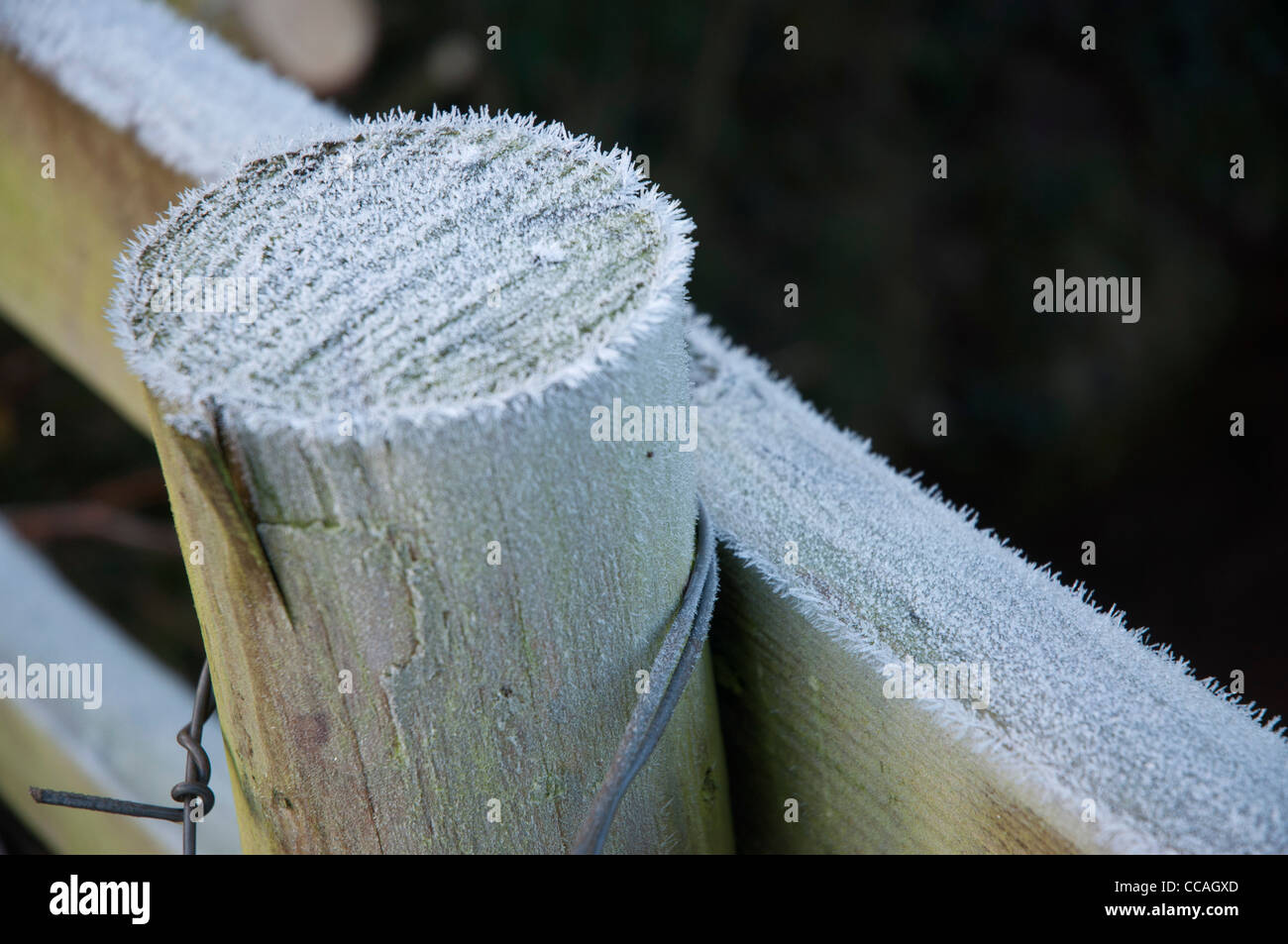 frost covered wooden fence post and rail in close up - Stock Image