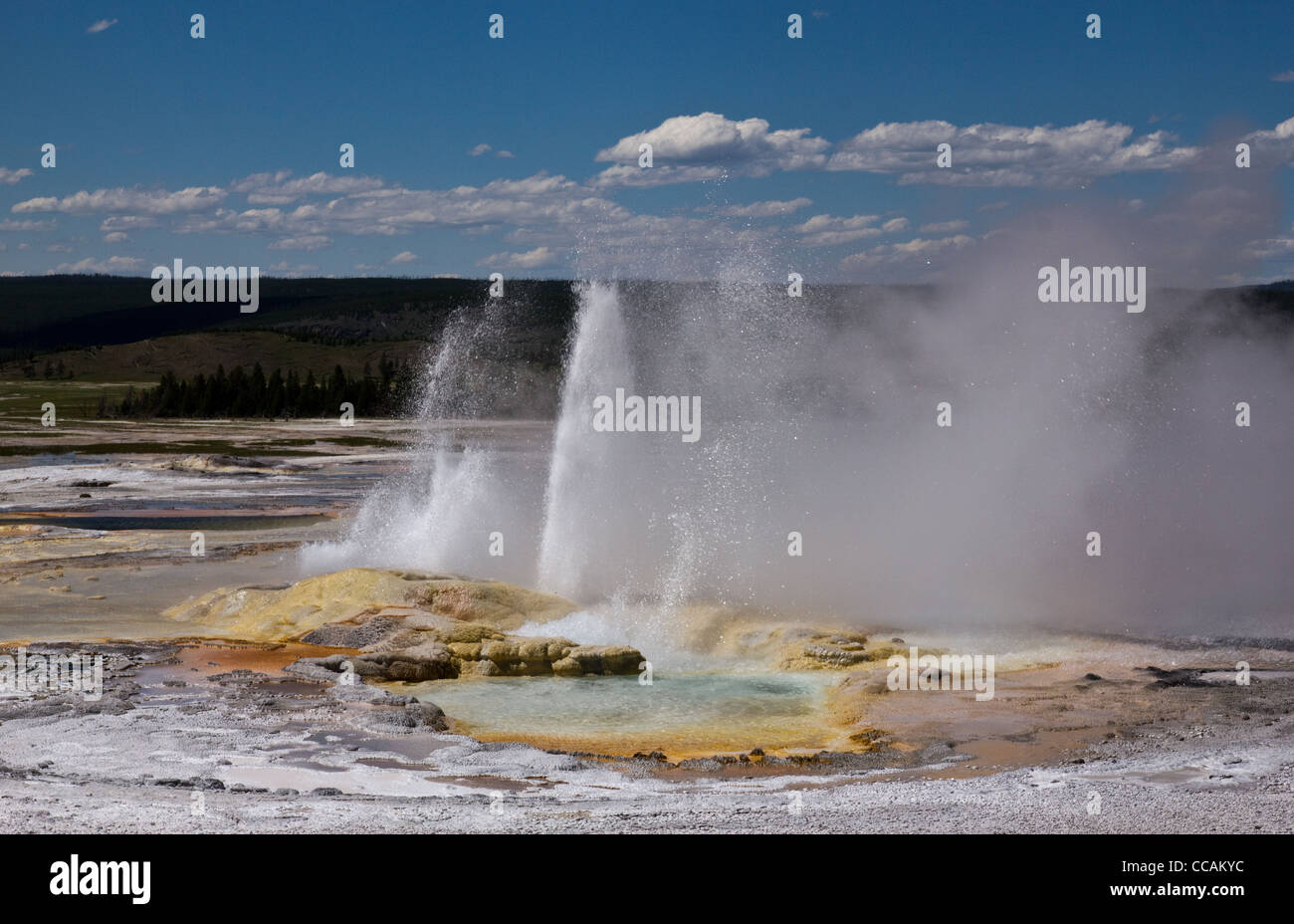 Clepsydra Geyser found in the lower geyser basin in Yellowstone National Park. Stock Photo