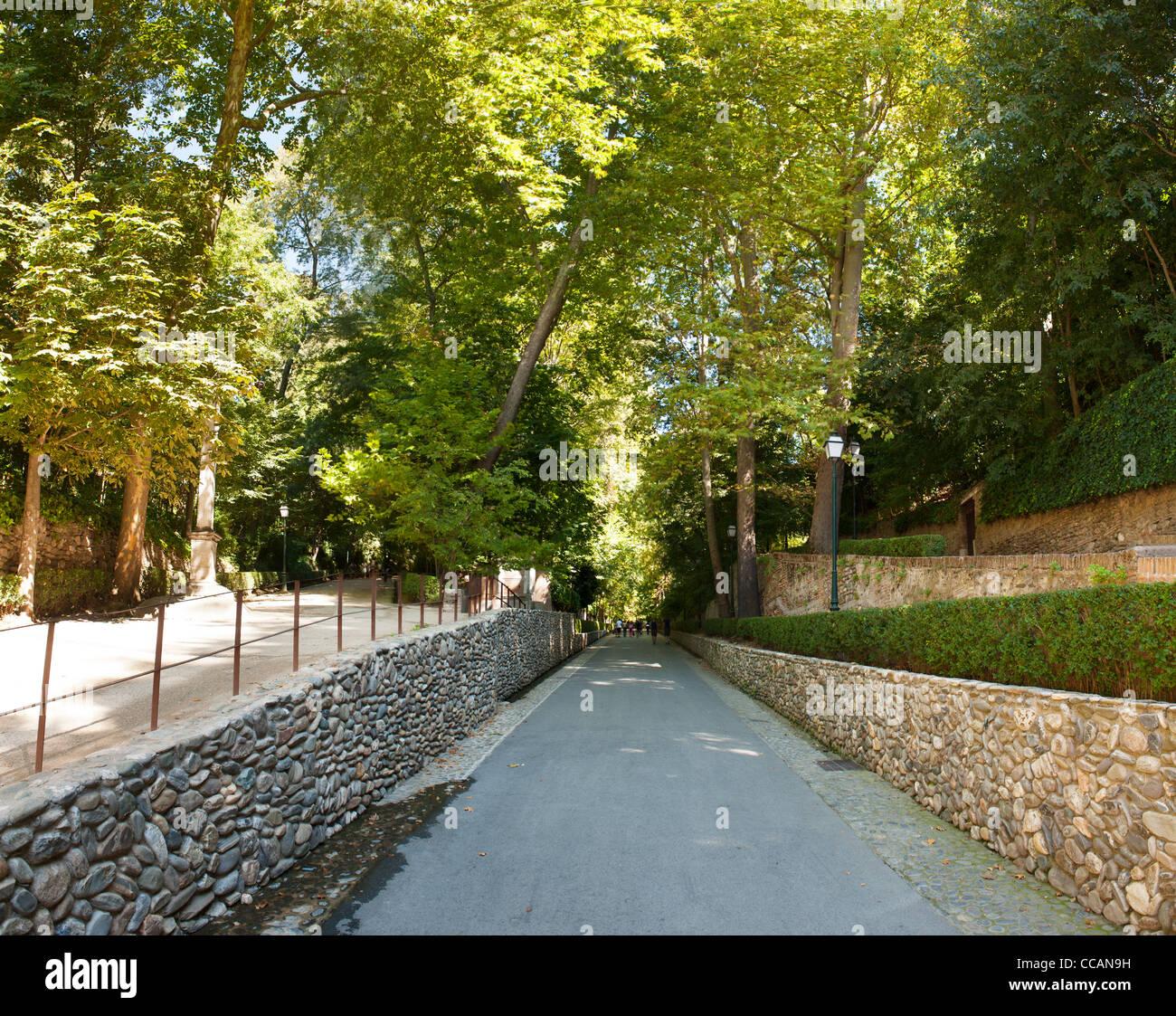 Alhambra Sage Granada Park Alhambra Ca: Path Winding Through Woodland Garden Stock Photos & Path